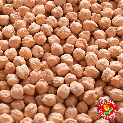 Legumbres León   La Flor Paramesa   Garbanzo Castellano